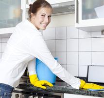 Schoonmaakbedrijf Landuyt bvba -  Lissewege - Diensten